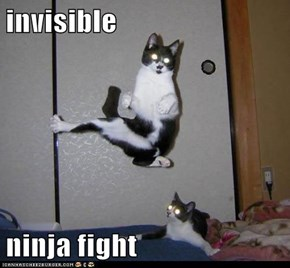 invisible  ninja fight