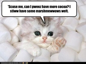 I can has cocoa?