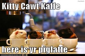 Kitty Cawt Kaffe  here is yr piglatte