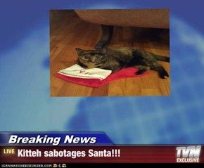 Breaking News - Kitteh sabotages Santa!!!