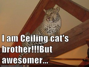 I am Ceiling cat's brother!!!But awesomer...