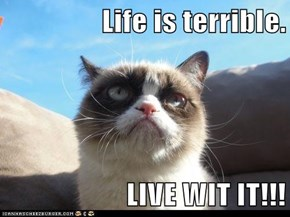 Life is terrible.  LIVE WIT IT!!!
