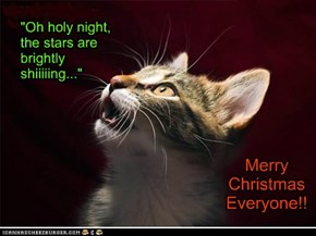 """Oh holy night,  the stars are  brightly shiiiiing..."""