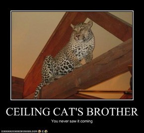 CEILING CAT'S BROTHER