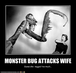 MONSTER BUG ATTACKS WIFE