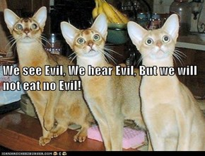 We see Evil, We hear Evil, But we will not eat no Evil!