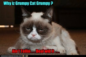 Why iz Grumpy Cat Grumpy ?