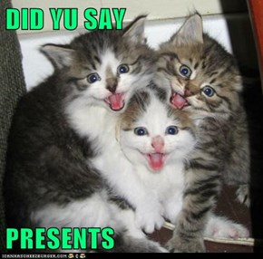 DID YU SAY  PRESENTS