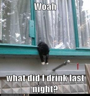 Woah  what did I drink last night?