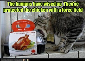 The humans have wised up. They've protected the chicken with a force field