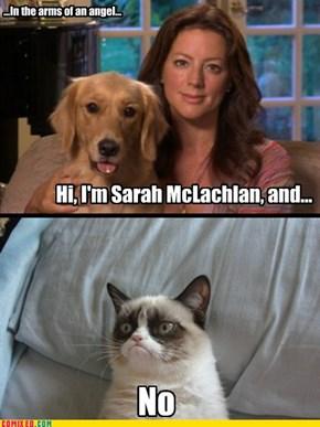 Sarah McNo!