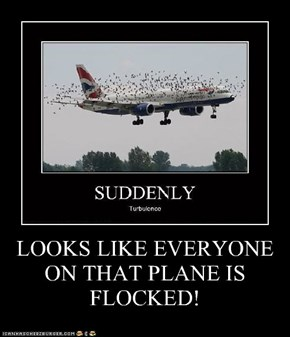 LOOKS LIKE EVERYONE ON THAT PLANE IS FLOCKED!