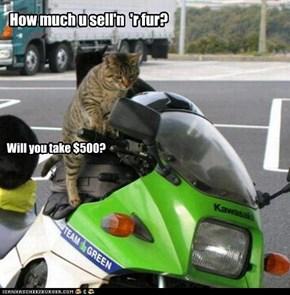 How much u sell'n  'r fur?