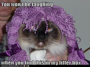 You won't be laughing  when you find this in my litter box.
