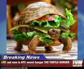 Breaking News - out now is KFC newst burger THE TURTLE BURGER
