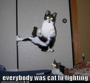 everybody was cat fu fighting