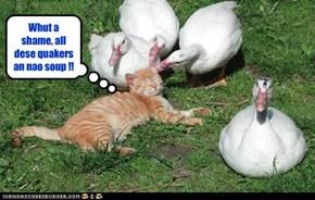 Whut a shame, all dese quakers an nao soup !!