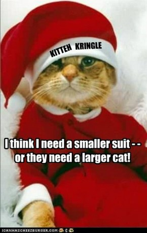 I think I need a smaller suit - - or they need a larger cat!