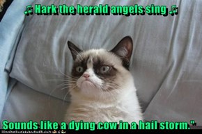 ♫ Hark the herald angels sing ♫   Sounds like a dying cow in a hail storm.""