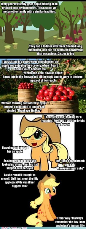 The Day I Met Applejack #1 Fan