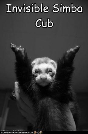 Invisible Simba Cub