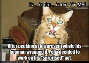 "After peeking at his present whyle his hooman wrapped it, Felix decided to work on his ""surprised"" act."