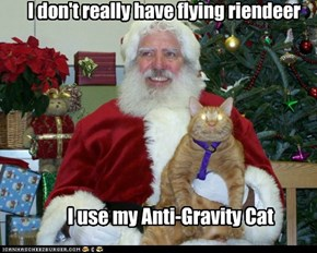 I don't really have flying riendeer