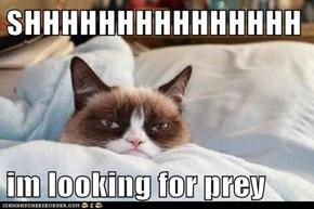 SHHHHHHHHHHHHHHH  im looking for prey