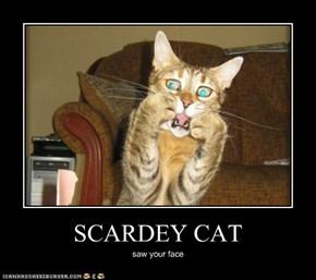 SCARDEY CAT