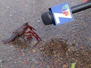 And Now for Public Opinion on the Upcoming Fiscal Cliff, Here is Lobster. Lobster?