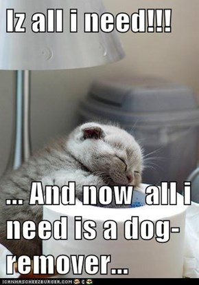 Iz all i need!!!   ... And now  all i need is a dog-remover...