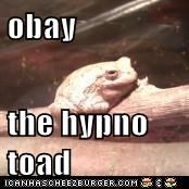 obay  the hypno toad
