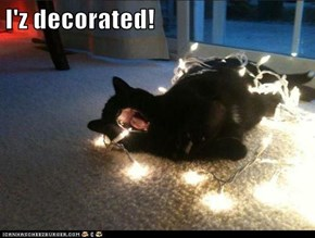 I'z decorated!