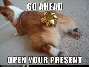 GO AHEAD  OPEN YOUR PRESENT