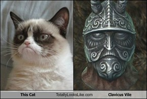 This Cat Totally Looks Like Clavicus Vile