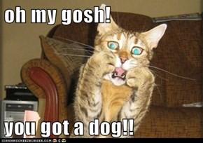 oh my gosh!  you got a dog!!