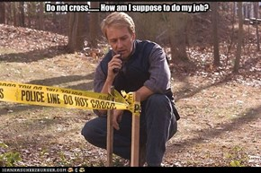 Do not cross....... How am I suppose to do my job?