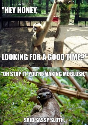 Sassy Sloth Wants Your Body
