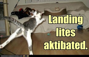 Pwepare fur landing