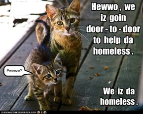 Hewwo ,  we   iz  goin   door - to - door  to  help  da  homeless .