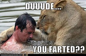 DUUUDE....  YOU FARTED??