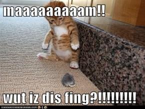 maaaaaaaaam!!   wut iz dis fing?!!!!!!!!!