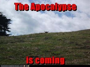 The Apocalypse  is coming