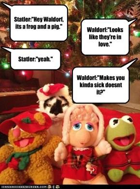 Not the first to be disappointed by Muppets
