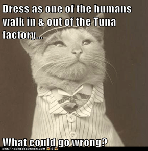 Dress as one of the humans walk in & out of the Tuna factory...  What could go wrong?