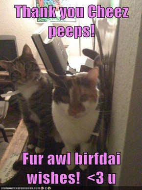 Thank you Cheez peeps!  Fur awl birfdai wishes!  <3 u