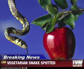 Breaking News - VEGETARIAN SNAKE SPOTTED