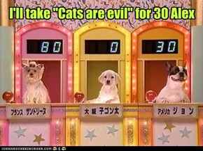 "I'll take ""Cats are evil"" for 30 Alex"