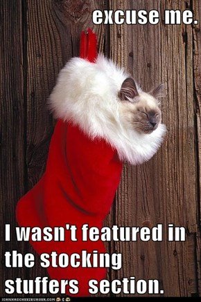 excuse me.  I wasn't featured in the stocking stuffers  section.