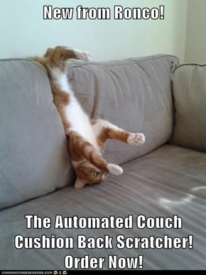 New from Ronco!  The Automated Couch Cushion Back Scratcher! Order Now!